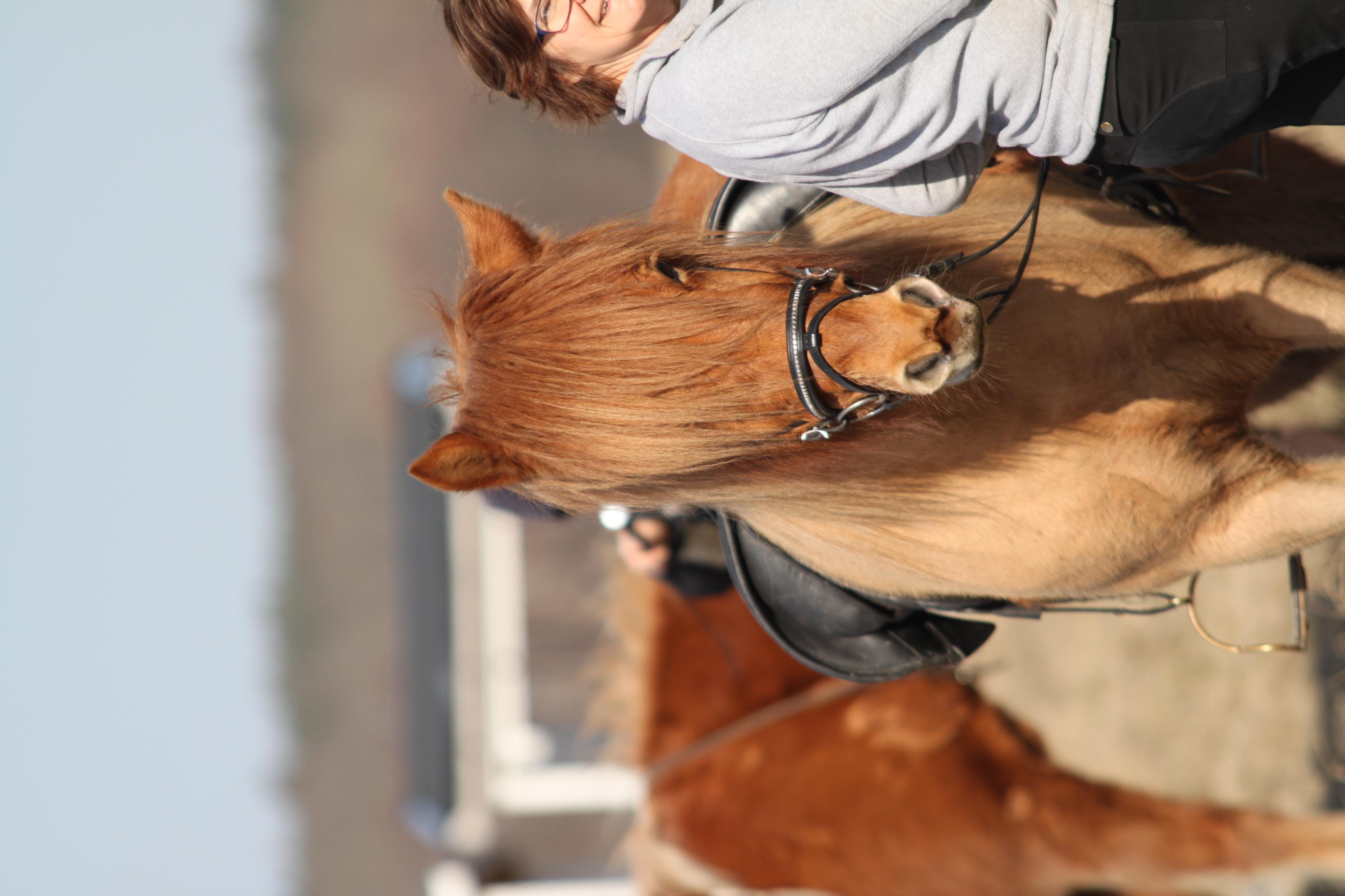 Malins häst Lillan och Marie