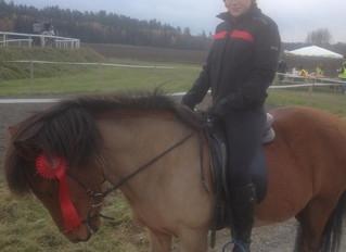 lär känna Vallfaris medlemmar och deras hästar