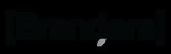 logo branders negro-01.png