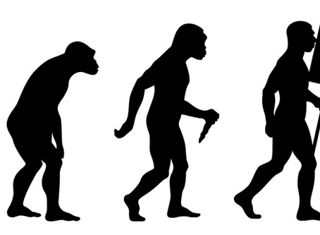 Will your Rebrand be Evolutionary or Revolutionary?
