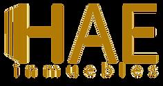 logo-ihae_edited.png