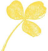 1-trefle-jaune.jpg