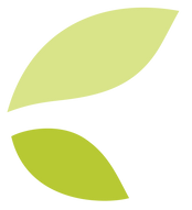 2-feuilles.png