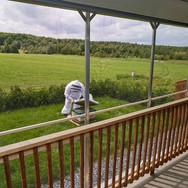 La galerie d'observation munie de moustiquaire permet de voir l'apiculteur en plein travail.