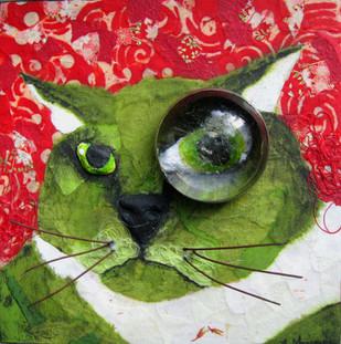 Barn Cat