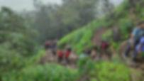 Bhimashankar DarkGreen Adventures-095917
