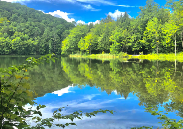 Lakeside (Plymouth, Vermont)