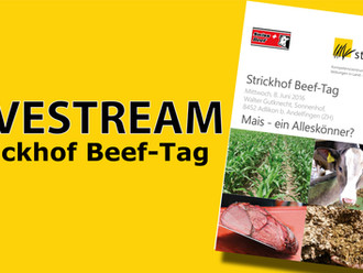 Livestream: Strickhof Beef-Tag 2016