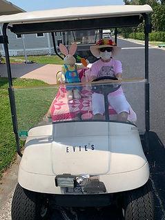 golfcart8.jpg