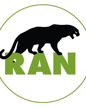 ran2.jpg