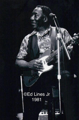 Muddy at ChicagoFest 1981