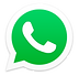 WhatsApp_Logo_principal-sem-fundo.png