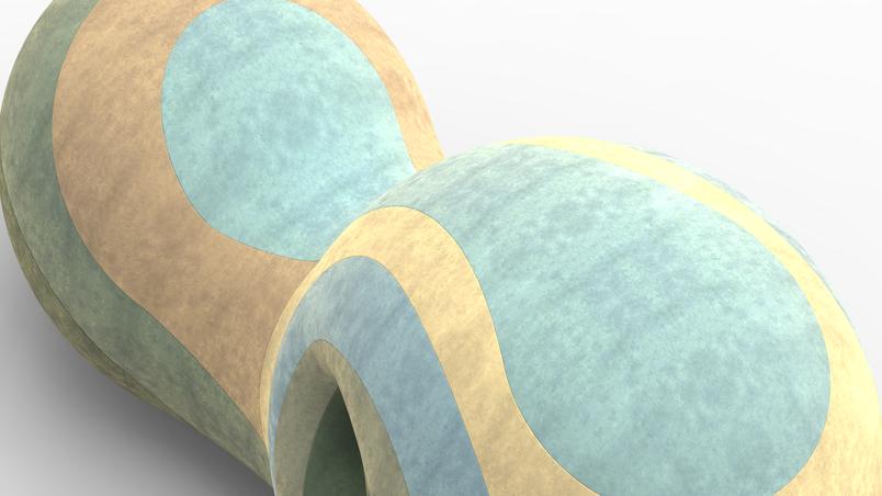 renderings_02.21 (2).png