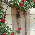chateau-de-la-giraudiere-les-cottages.pn