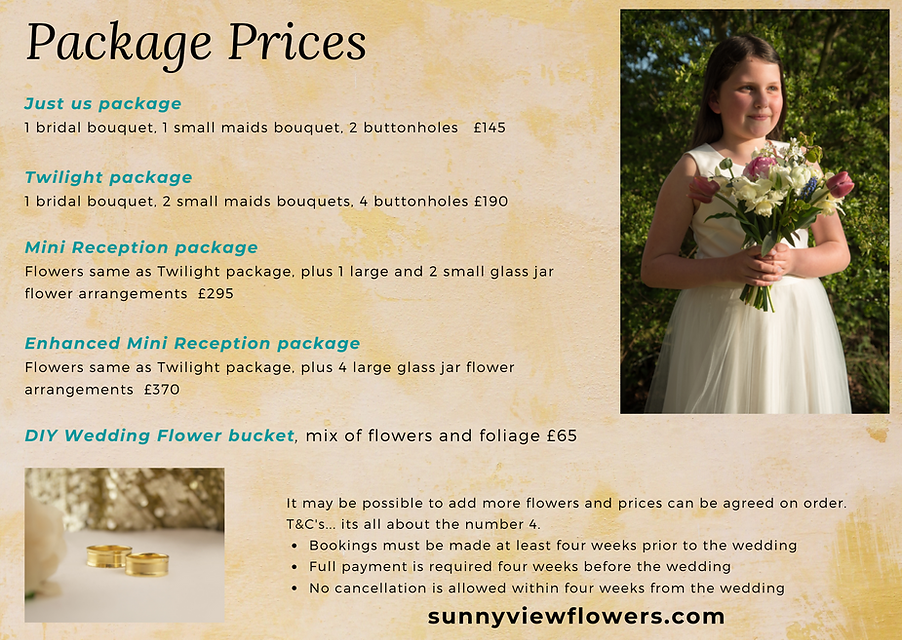 micro wedding guide page 2.png