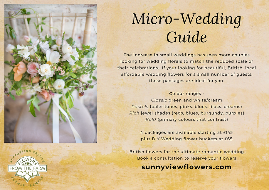 micro wedding guide page 1.png