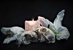 Martin Woodhead,Cat Skull and Lilies