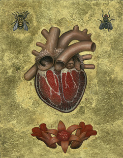 Scott Holloway, Sacred Seed