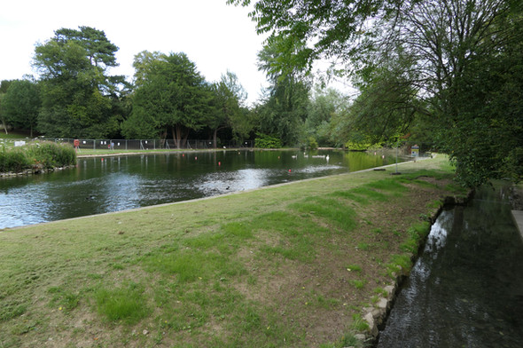 Boating Lake South Side View - 23 July 20
