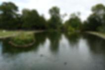 Kearsney Abbey - Bridge View 4 - 26 Jul