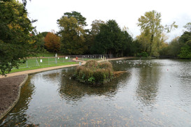 Boating Lake North Side Bridge View - 24 October 20
