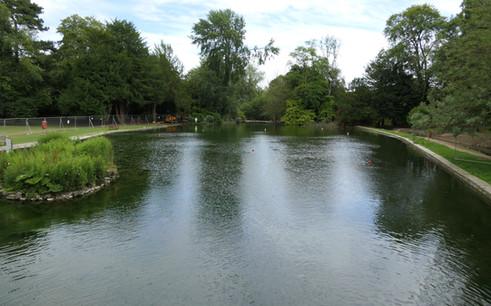Boat Lake North & South Fencing - 1 Jul 20