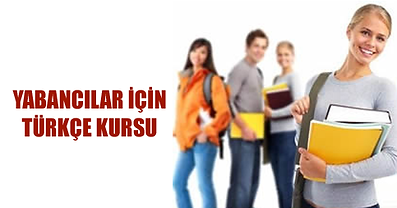 Групповое обучение турецкому в Самаре