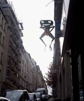 """"""" la grenouille du lendemain """""""