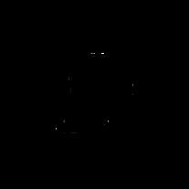 Cannes_Lions_Logo_Black.png