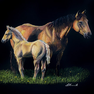 Springtime Sunshine AQHA mare and foal a