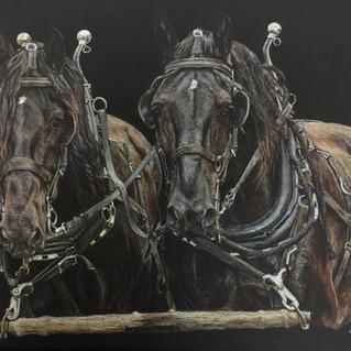 Buck _ Johnny team western art by Red Do