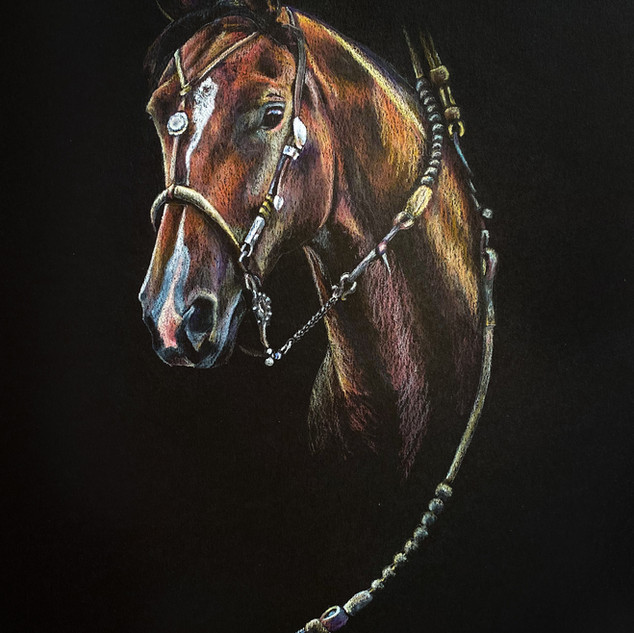 The Bridle Horse portrait by Libby Humen