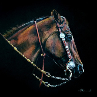 Suit Yourself bridle horse western art b