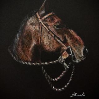 Bones snaffle bit western horse art.jpg