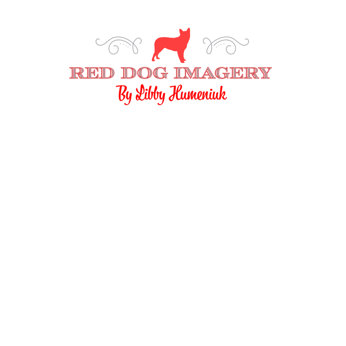 RDI Text Only Logo 1.png