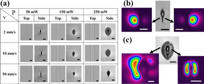 26. Raman spectroscopy of femtosecond laser written low propagation loss optical waveguides in Schott N-SF8 glass