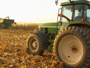 Crece la demanda de campos en alquiler cómo consecuencia de la rentabilidad agrícola