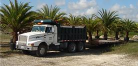 Dump Truck- Miami-Hauling