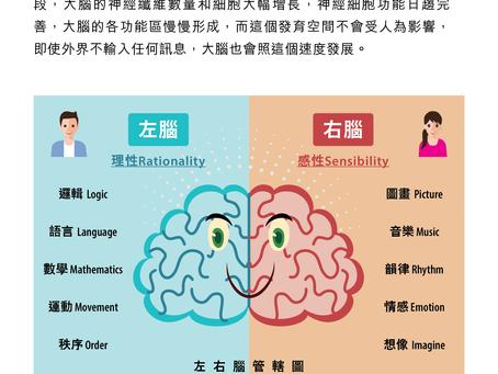 大腦創意小知識