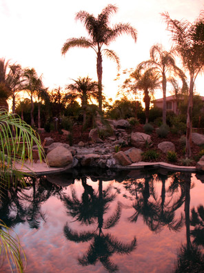 Pool Sunsets