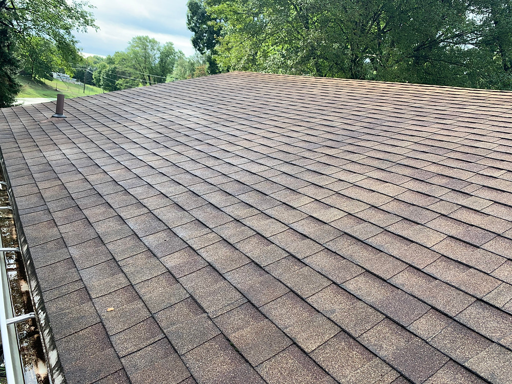 seven year old roofing shingles with granule loss