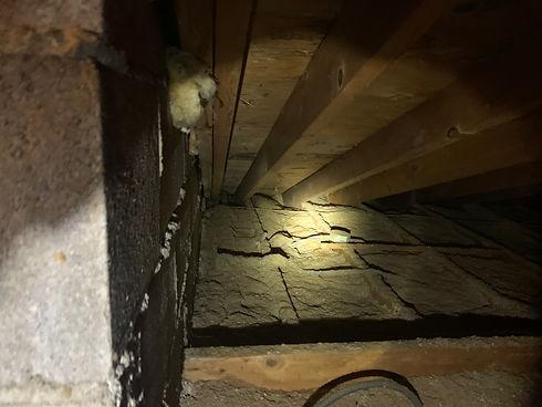 under insulation
