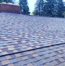 Pro Singles Roof Installation in Livonia, MI