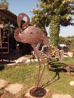 flamingo caracol