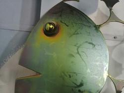 Peixe Manta