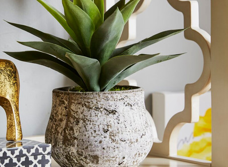 Our Top 5 Favorite Faux Plants for 2020
