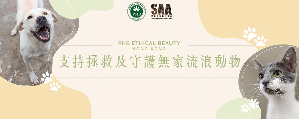 SAA Banner_Press Release.jpg