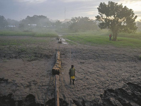 Hay 1.500 demandas relacionas con cambio climático, pero la mayoría fracasan