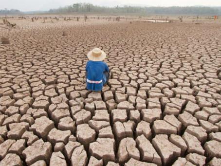 La ONU alerta las consecuencias del cambio climático