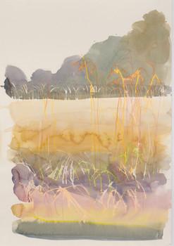 Wheat field, Brittany 1